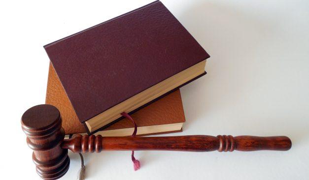 Investigation & Litigation Support